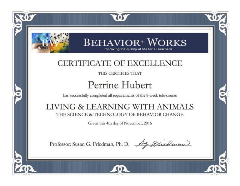 Certificat LLA